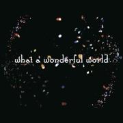 What a Wonderful World - Salyu × 小林武史