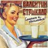 Валентин Стрыкало - Наше лето обложка