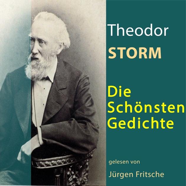 Gedicht von theodor storm noch einmal