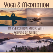 Yoga & Meditation: 111 Relaxation Music with Sounds of Nature for Inner Peace, Bliss & Harmony, Sounds Therapy for Spiritual Healing