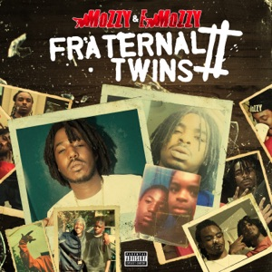 Fraternal Twins 2 Mp3 Download