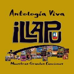 Antología Viva