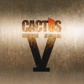 Cactus - Doing Time