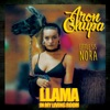 Llama In My Living Room (feat. Little Sis Nora) - Single
