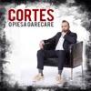 O Piesa Oarecare - Single, Cortes