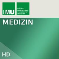 MeCum Modul 3 - WiSe 2008/2009 podcast
