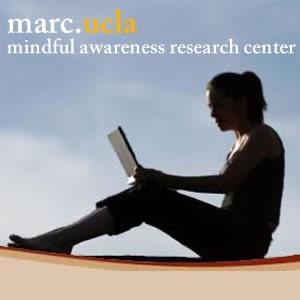 Mindful Meditations:UCLA