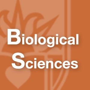 Biological Sciences Department - Graduate Research