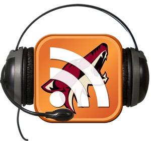 Arizona Coyotes Radio Interviews