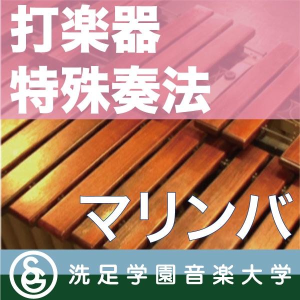 打楽器特殊奏法「マリンバ」