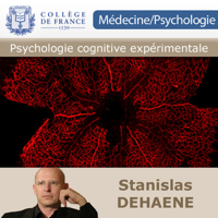 Psychologie cognitive expérimentale podcast