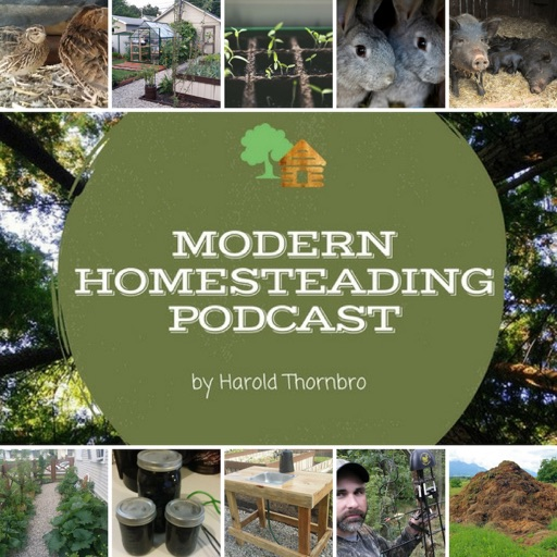 Cover image of The Modern Homesteading Podcast