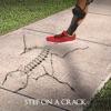 Step on a Crack artwork