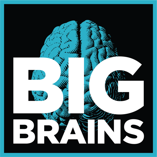 Cover image of Big Brains