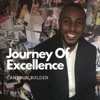 Journey Of Excellence artwork