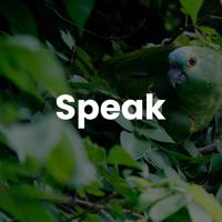 Speak With Tyler Bryden podcast