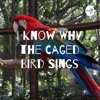 I Know Why the Caged Bird Sings artwork