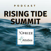 Rising Tide Summit Podcast podcast