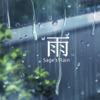 Find Solace In The Rain  artwork
