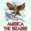 America The Bizarre artwork