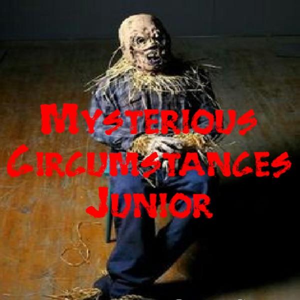 Mysterious Circumstances Junior