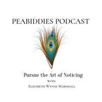 Peabiddies: Pursue the Art of Noticing podcast