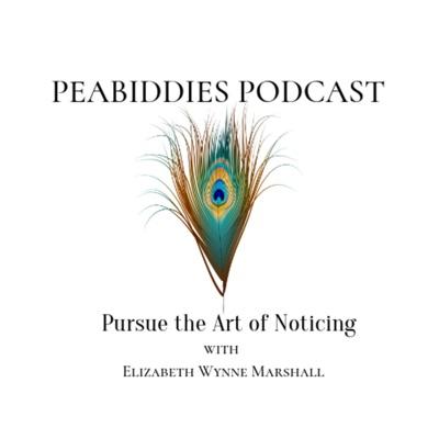 Peabiddies: Pursue the Art of Noticing