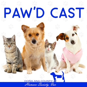 The DACHS Paw'd Cast