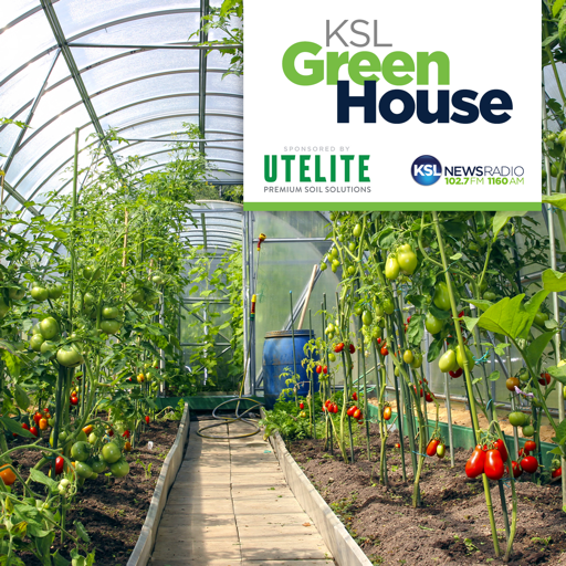 Cover image of KSL Greenhouse