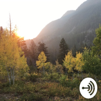 Test Podcast Tdeedles podcast
