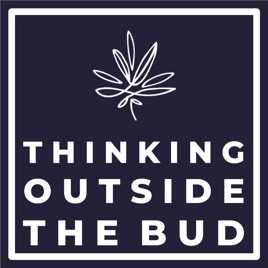 Thinking Outside The Bud: Dr  Peter Grinspoon, Primary Care
