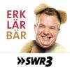 Der SWR3 Erklärbär