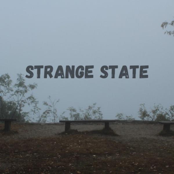 Strange State: A True Crime Podcast