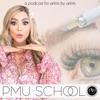 PMU School: A Podcast For Artists by Artists artwork