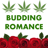Budding Romance: A Podcast about Bachelor in Paradise podcast