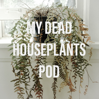My Dead Houseplants the Podcast podcast
