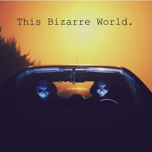 This Bizarre World