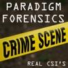 Paradigm Forensics - Real CSI's artwork