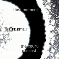 This Moment: The Xguru Podcast