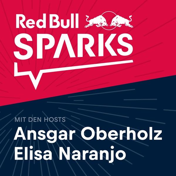 Red Bull Sparks – Unternehmer & Denker im Interview