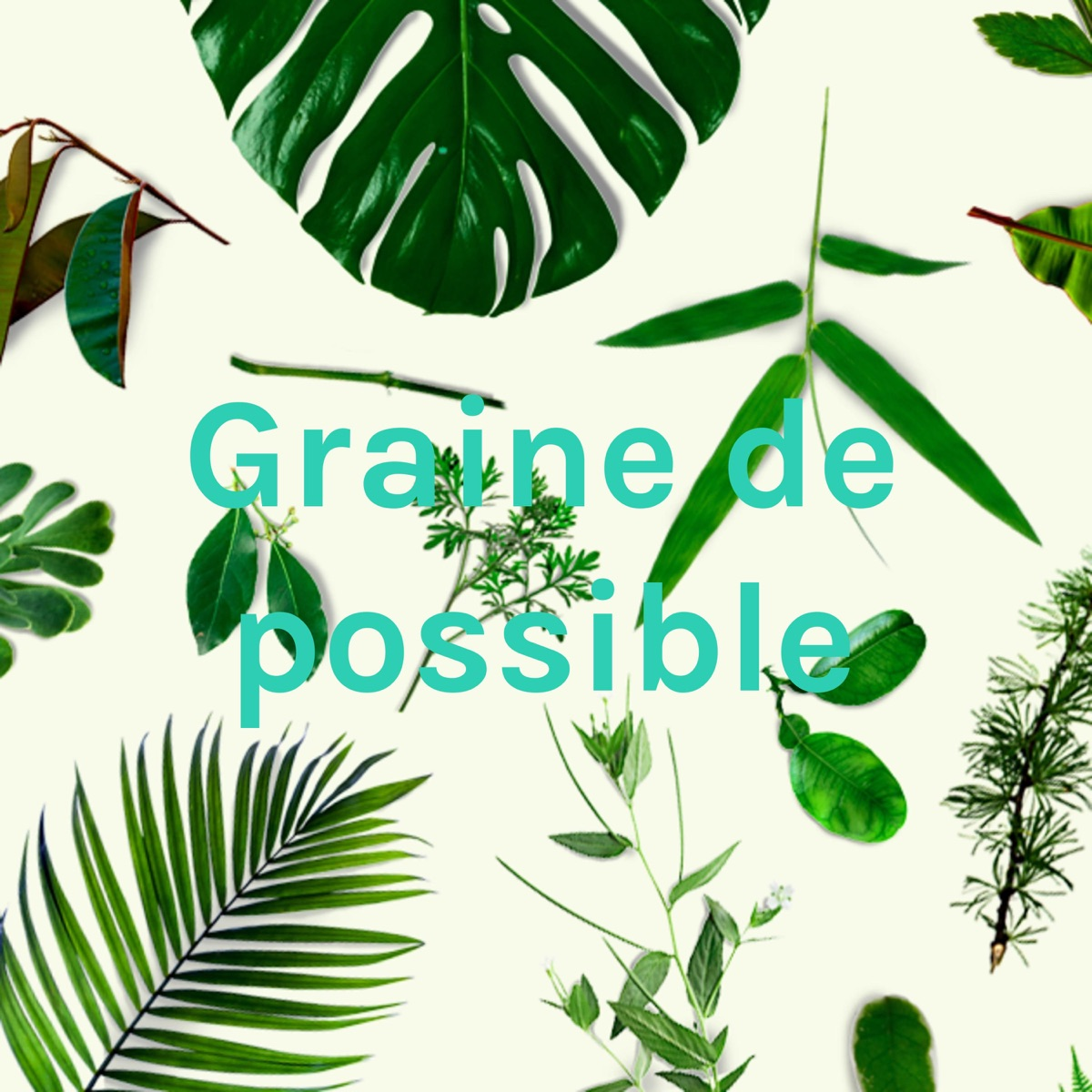 Graine de possible