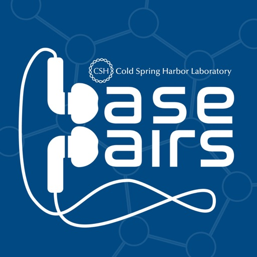 Cover image of Base Pairs