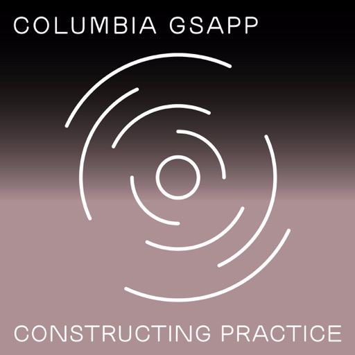Cover image of Constructing Practice