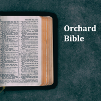Orchard Bible podcast