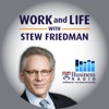 Work and Life with Stew Friedman artwork