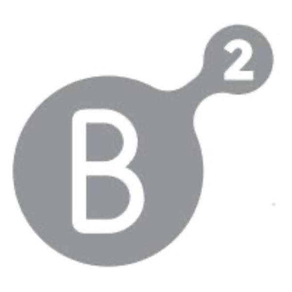 B Squared Motivation Podcast - B² Motivation