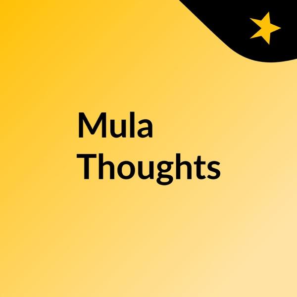 Mula Thoughts