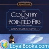 Country of the Pointed Firs by Sarah Orne Jewett artwork