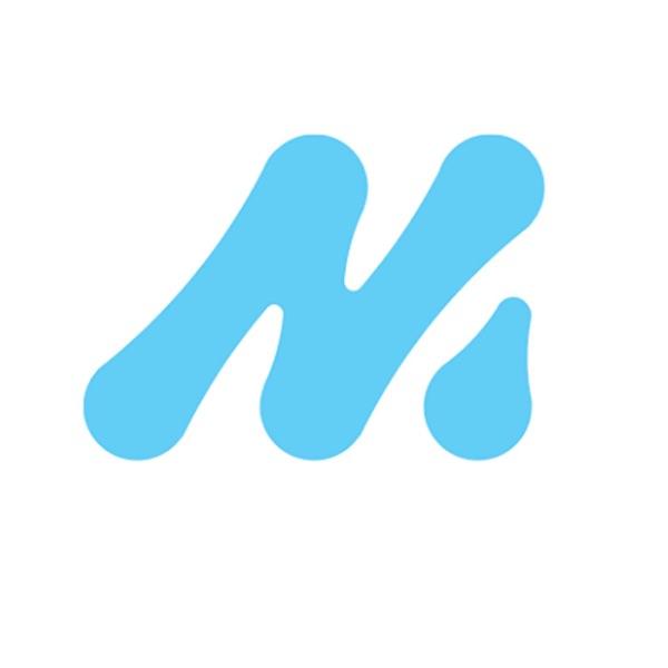 MobiSoft Holding