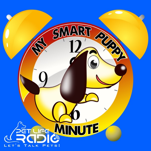The My Smart Puppy Minute on Pet Life Radio (PetLifeRadio.com)
